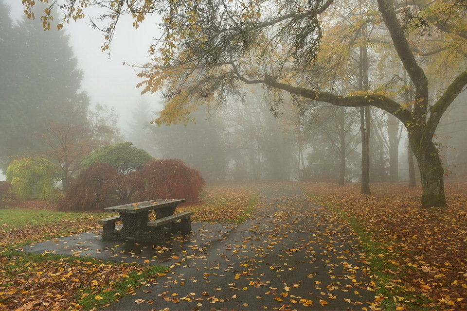 Туман в парке со столиком и лавочками.