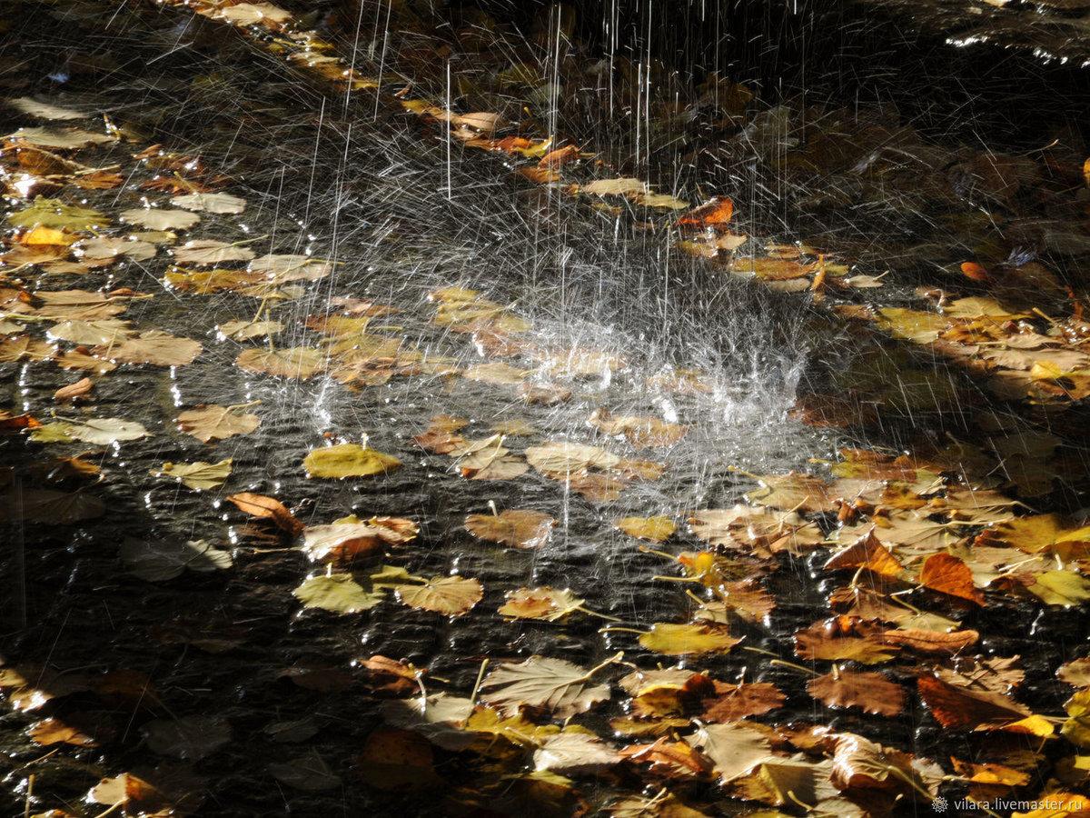 осенний дождливый день фото течение