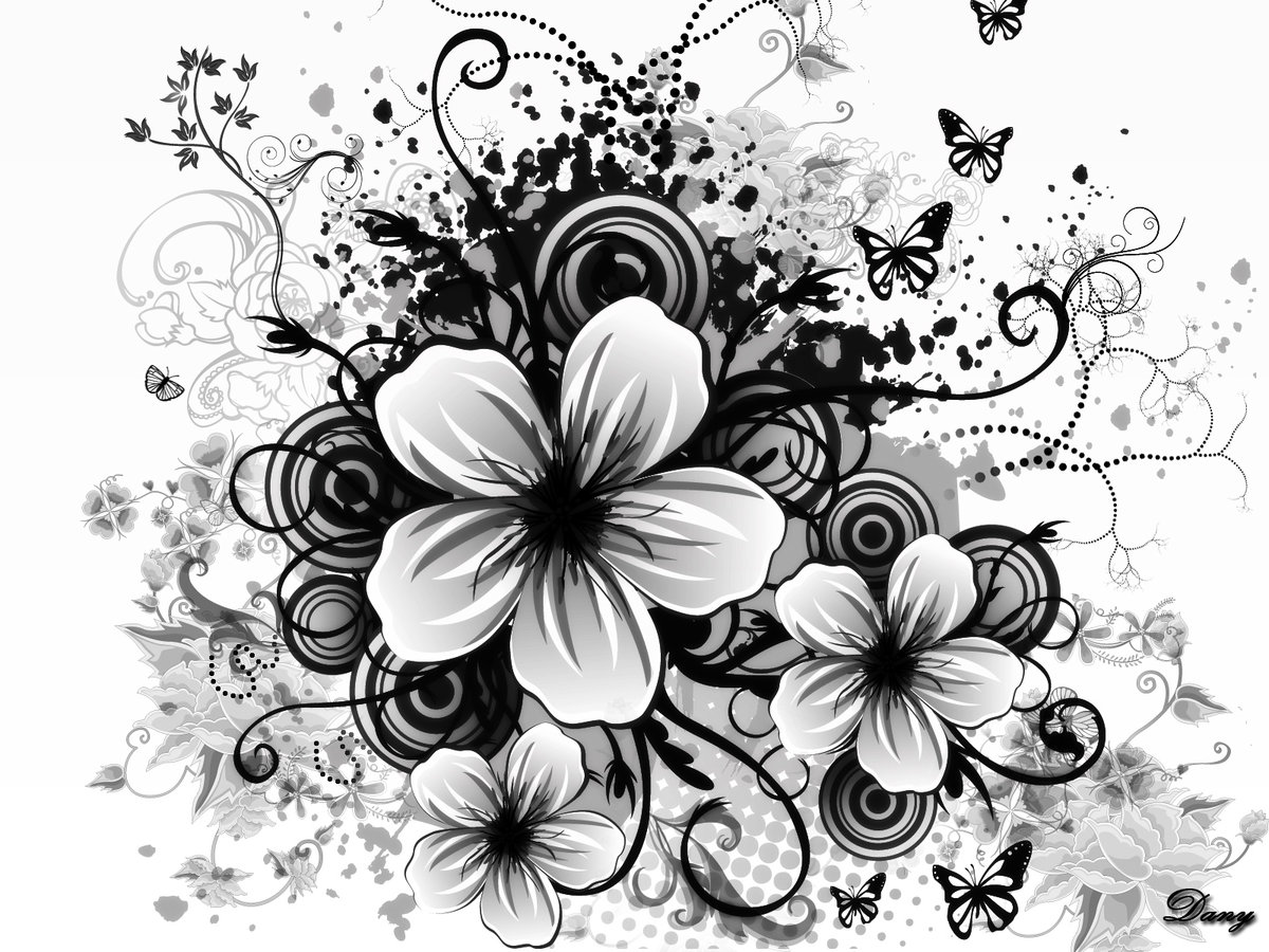 Красивые векторные черно белые картинки