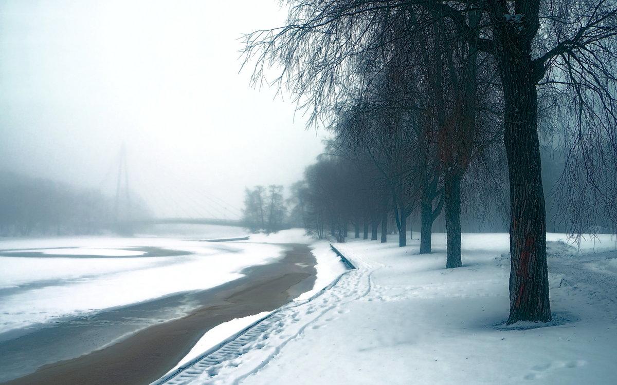 Пасмурный зимний день фото такой