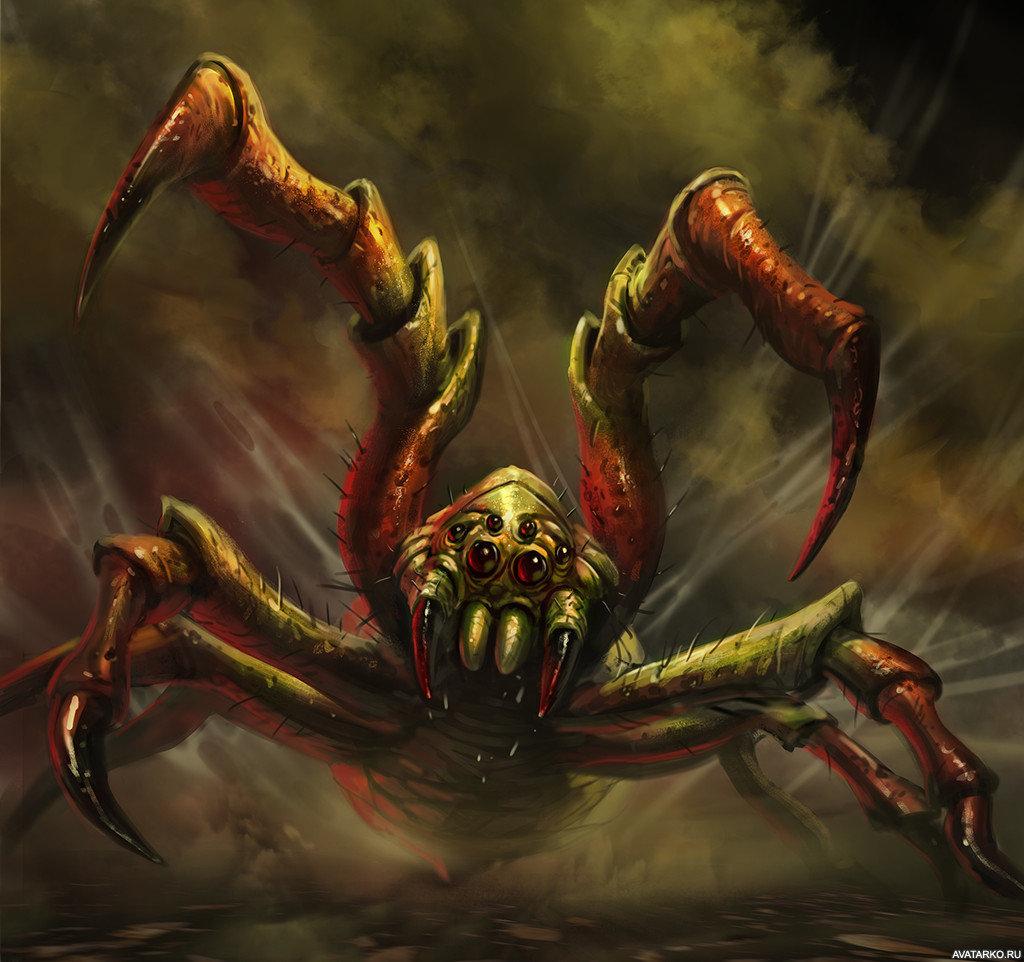 картинки зловещие пауки женщину инфо