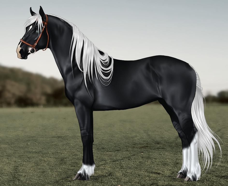Картинки лошадей редких пород