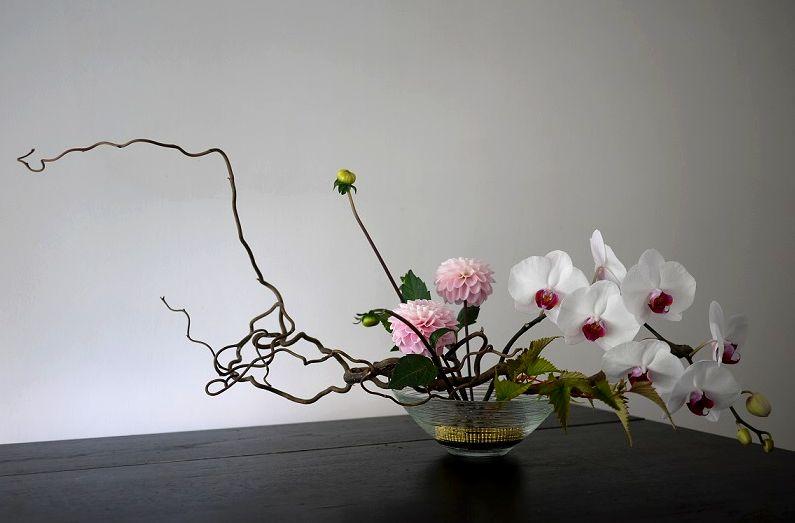 Гелениум, как называется японское искусство составления букетов