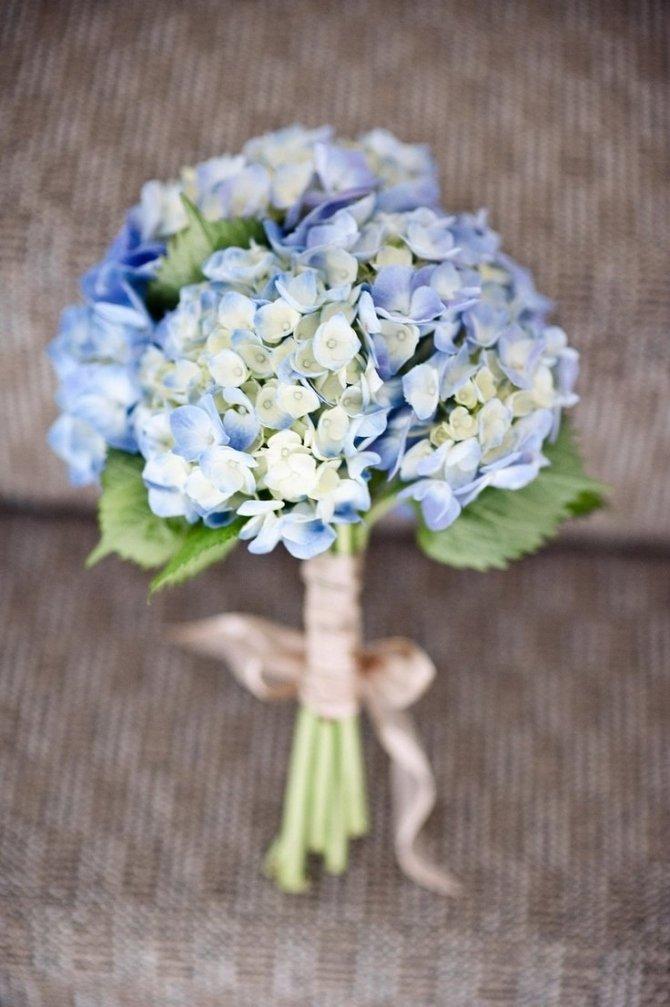 Тюльпанов фото, свадебный букет с гортензией