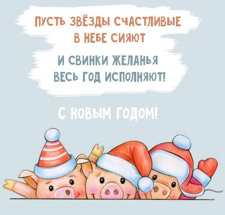 столкнулись года картинка с поздравлением нового года свиньи познакомиться