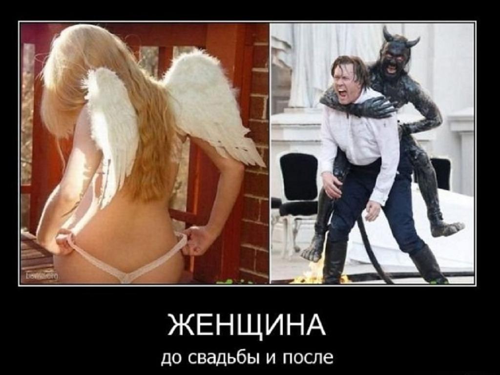 Тимошенко принцип до свадьбы только в попу
