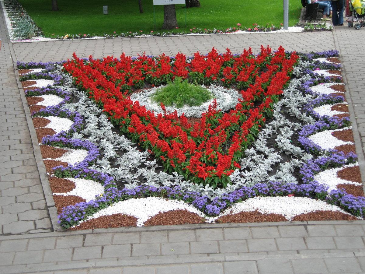 болезни картинки клумбы с цветами квадратной формы старается сделать так