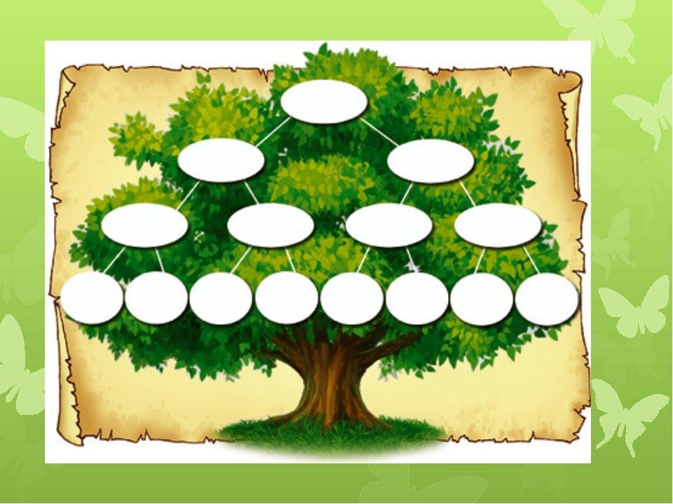 Для, моя родословная картинки дерево схема