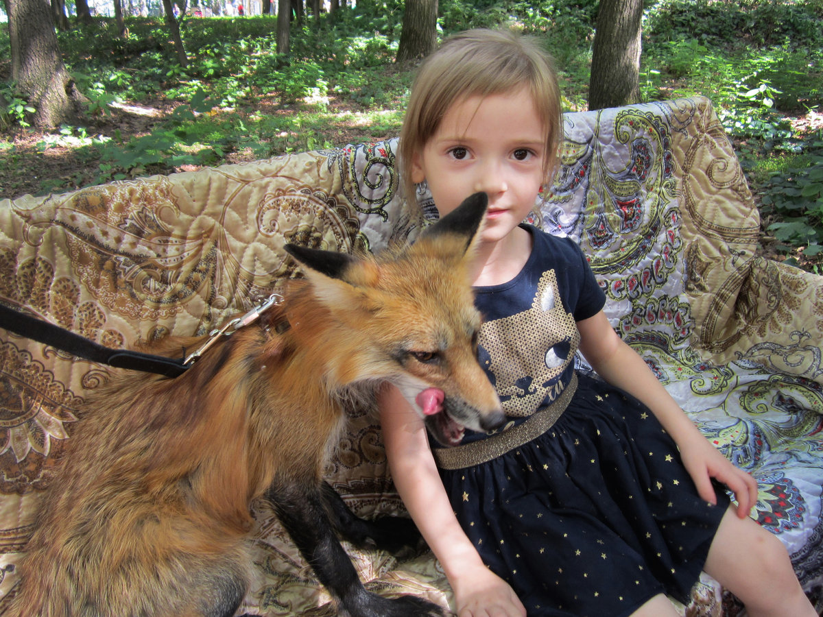 Девочка с лисицей