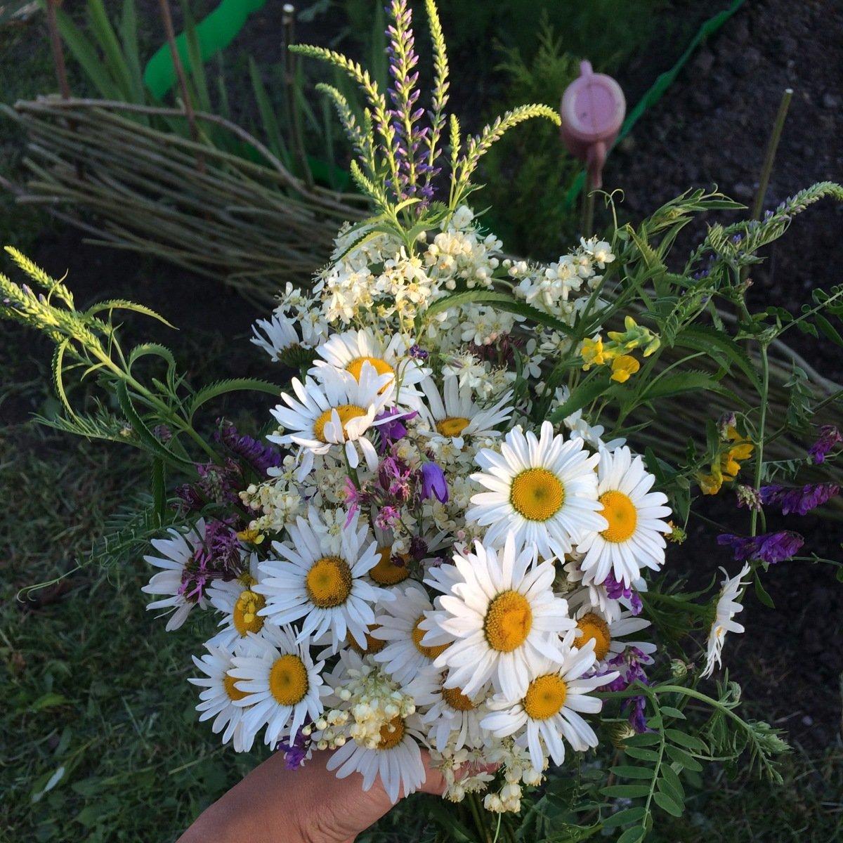 отыскать нужные шикарный букет полевых цветов фото картинки решили расписать
