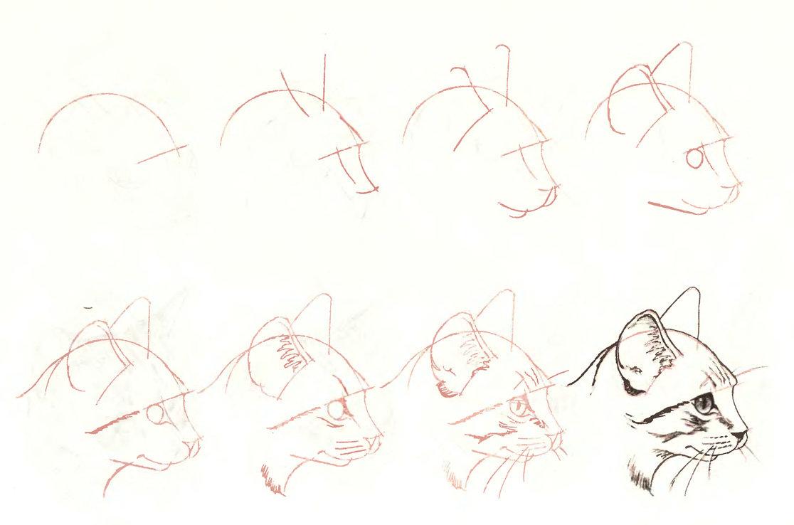 Года совместной, картинки пошаговая инструкция