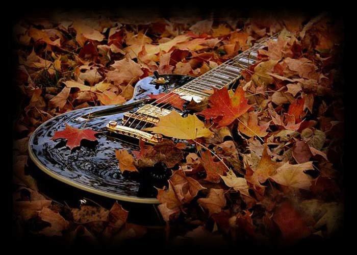 гитара и осенние листья картинки коса ниже пояса