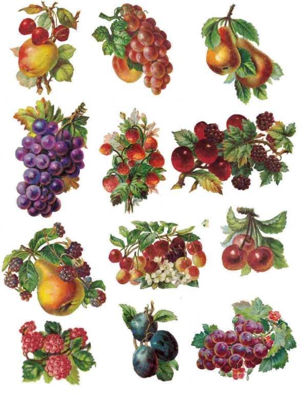 Картинки для декупажа фрукты ягоды