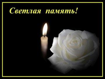 https://avatars.mds.yandex.net/get-pdb/1348397/ca34ec3a-75ed-419f-88a3-f6007a2ac9d5/s360