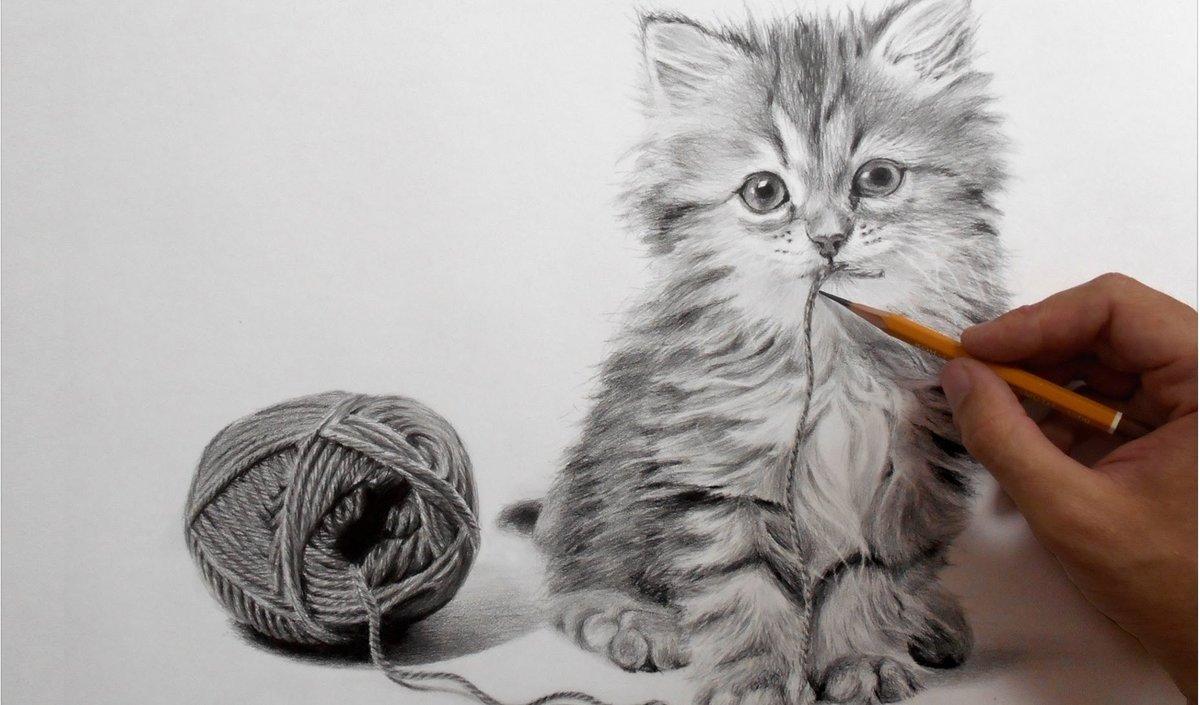Картинки с котятами рисунки, день веры надежды