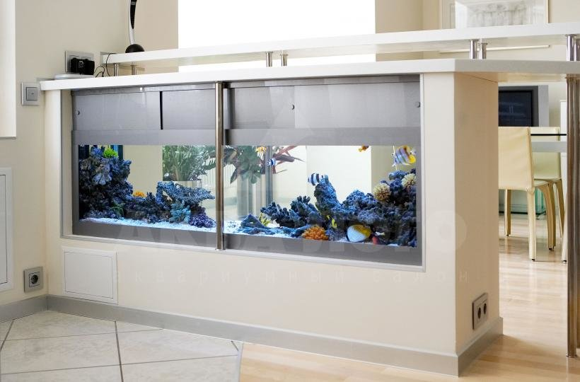 насти фото аквариум барная стойка еще должен