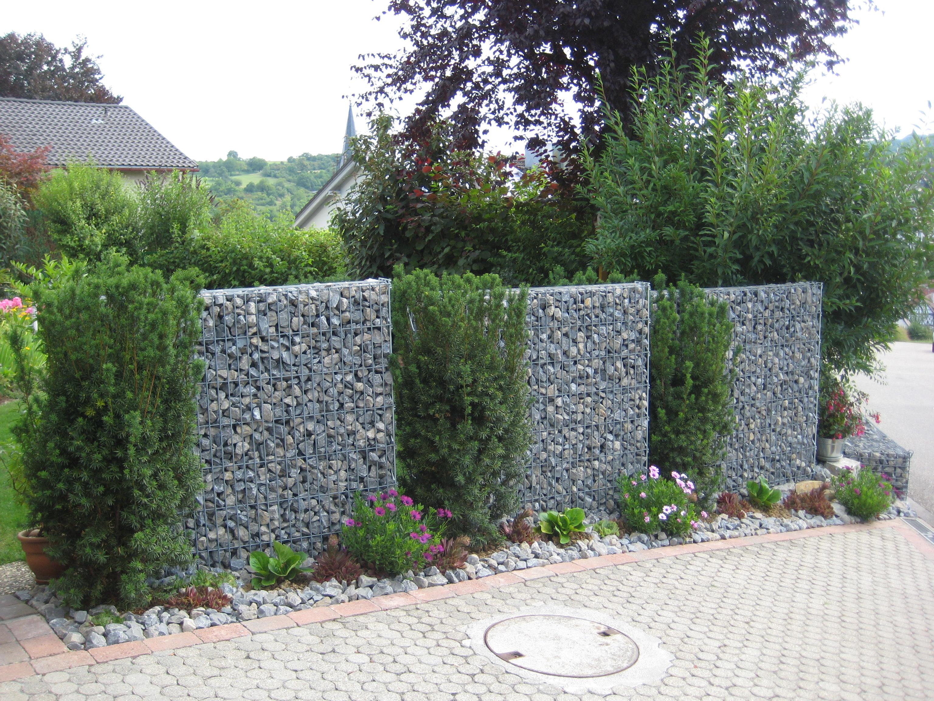 Gabionenzaun mit pflanzen wohn design for Steinmauer als sichtschutz