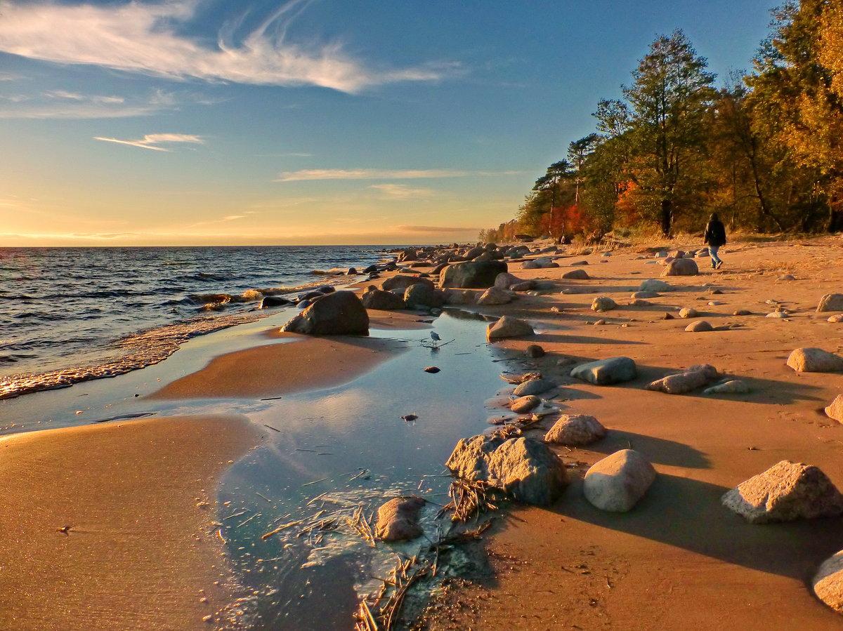 хотя фото пляжей финского залива фамилии требует