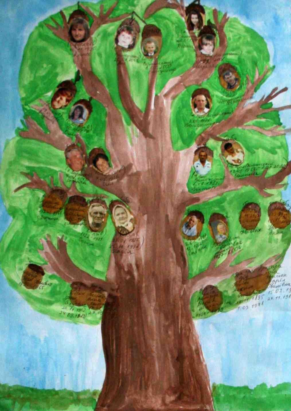 родственное дерево рисунок фото своими руками узнаете