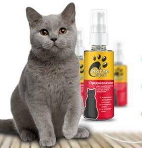 Когтеспрей. Кошка в Барнауле - куплю-продам -  - стр. 2  Подробнее по ссылке... 🛒 http://bit.ly/2LLa2pC      Этот спрей настолько умный, что маскируется под запах воздуха! Кошка на него совершенно не реагирует!ФОТО средства, мохнатой любимицы и СОСТАВ. Заказала Когтеспрей по интернету, пока шла посылка купила в ближайшем зоомагазине три когтеточилки, по количеству Мест где Мурзик любил поточить коготки. Как мы поняли, Вы намерены заказать Когтеспрей в Усть-Каменогорске. В состав Когтеспрей входит уникальная формула, работающая на 98% кошек. Когтеспрей. Спрей для кошек:  грн. - Зоотовары Одесса на «Когтеспрей Купить со скидкой % :///» Когтеспрей отзывы от пациентов Когтеспрей - спрей приучения к месту для кошки « Каталог Духи распродажа ликвидация магазина - Деловой Лес | Форум