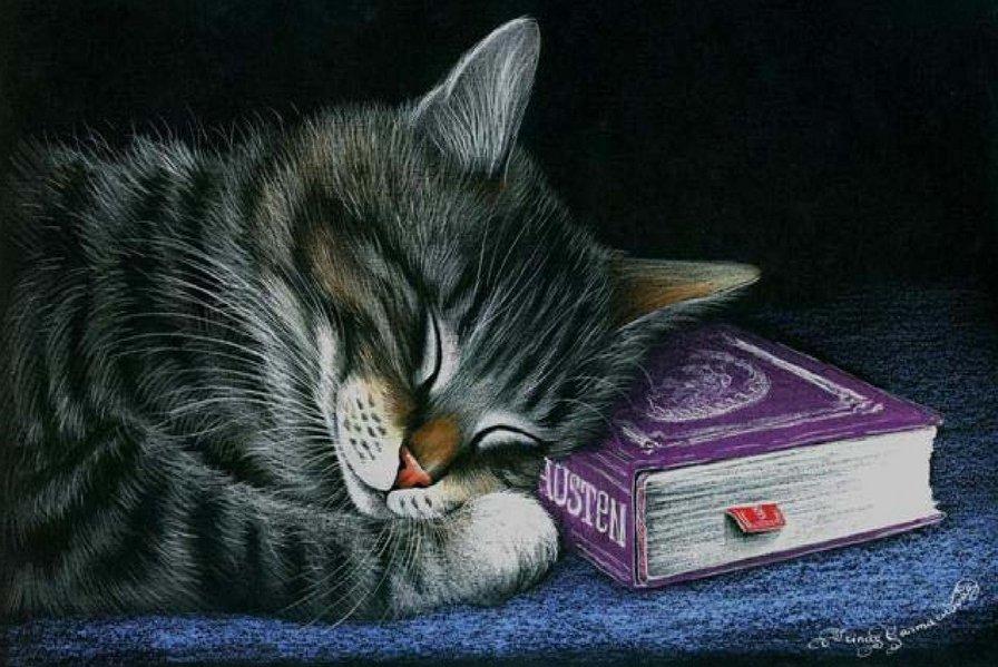 Кот спит открытка, праздником веры