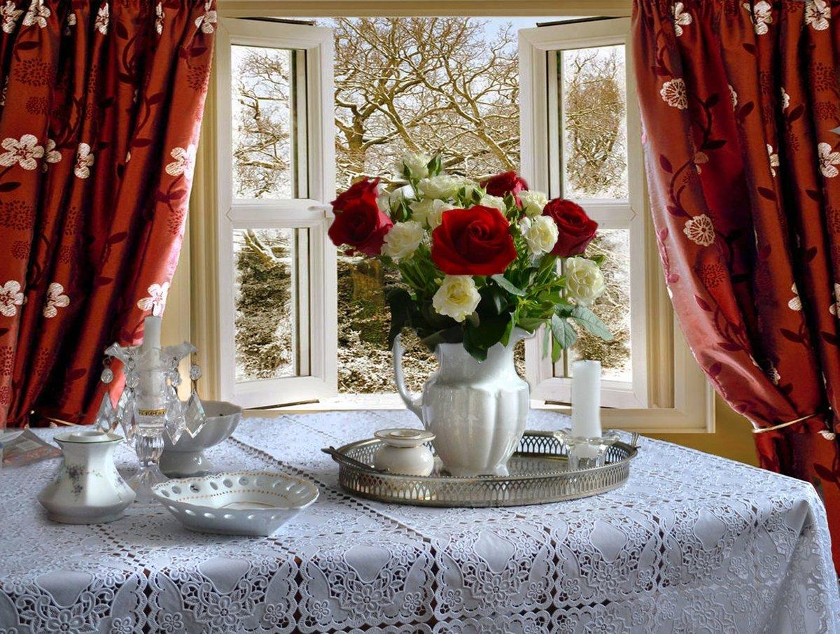 Черные, цветок для домашнего уюта