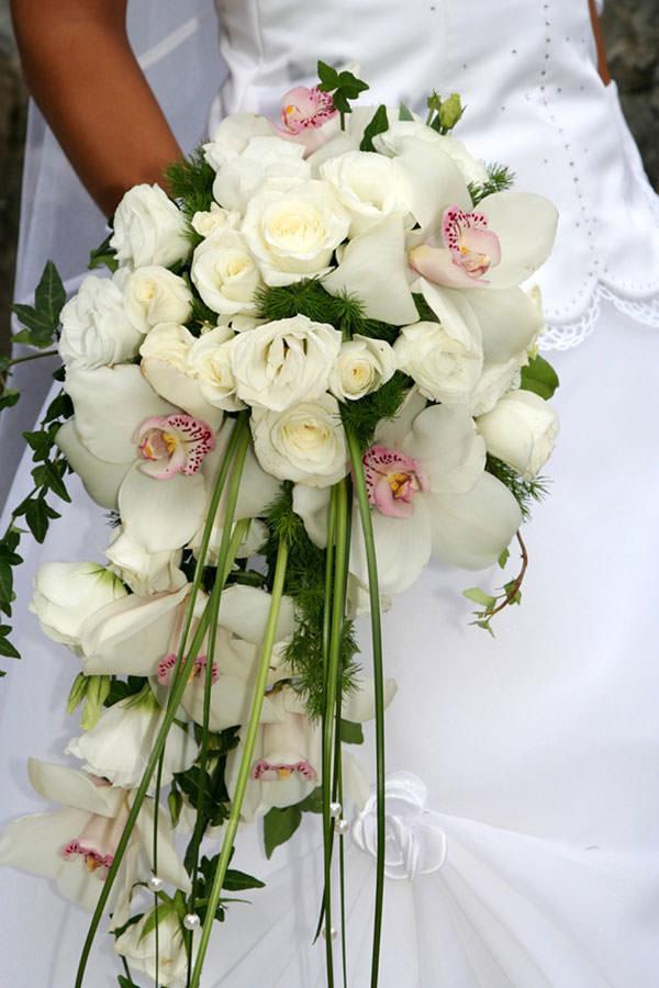 Розы киев, букет невесты орхидеи капля