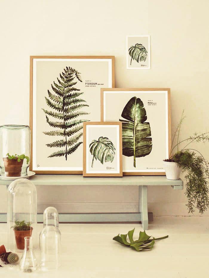 постеры для интерьера ботаника буберта