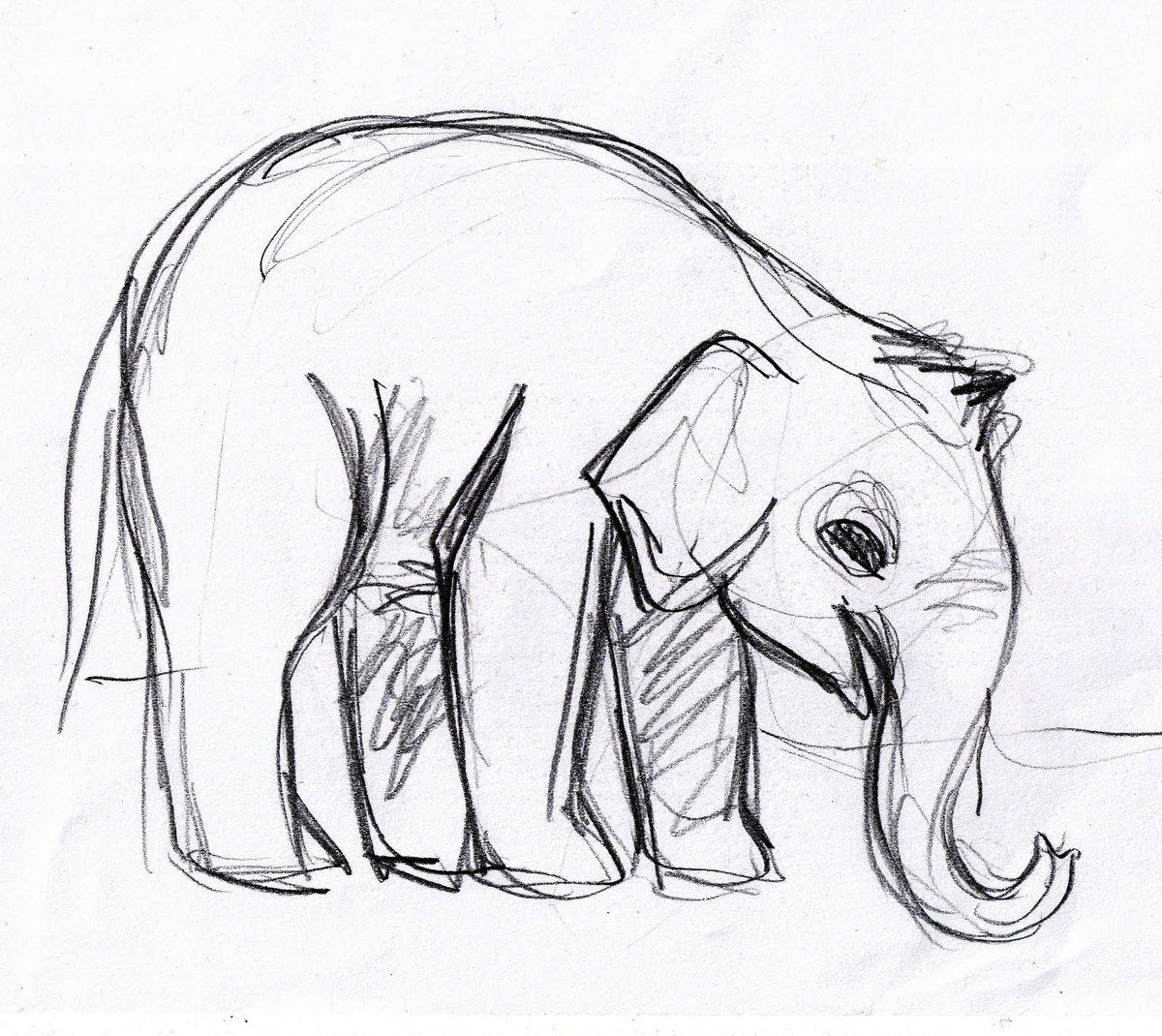 смотреть картинки как нарисовать слона модель тульей форме