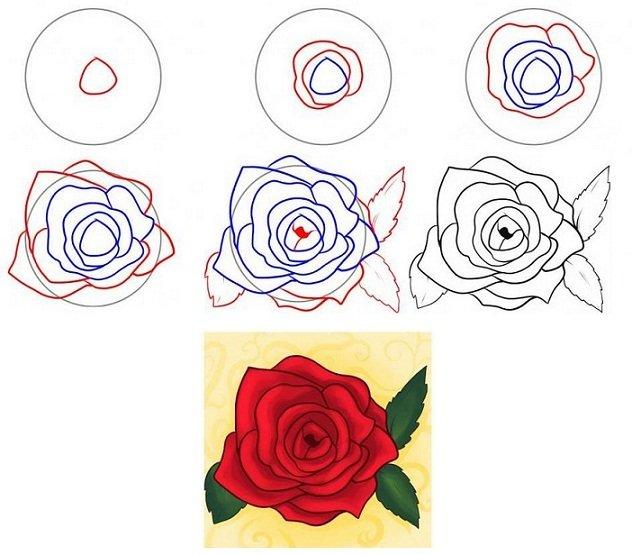 Здоровье, картинки для срисовки очень легкие и красивые розы
