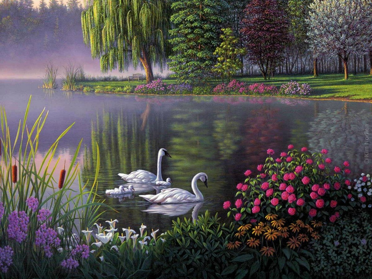 Картинку, картинки открытки природа