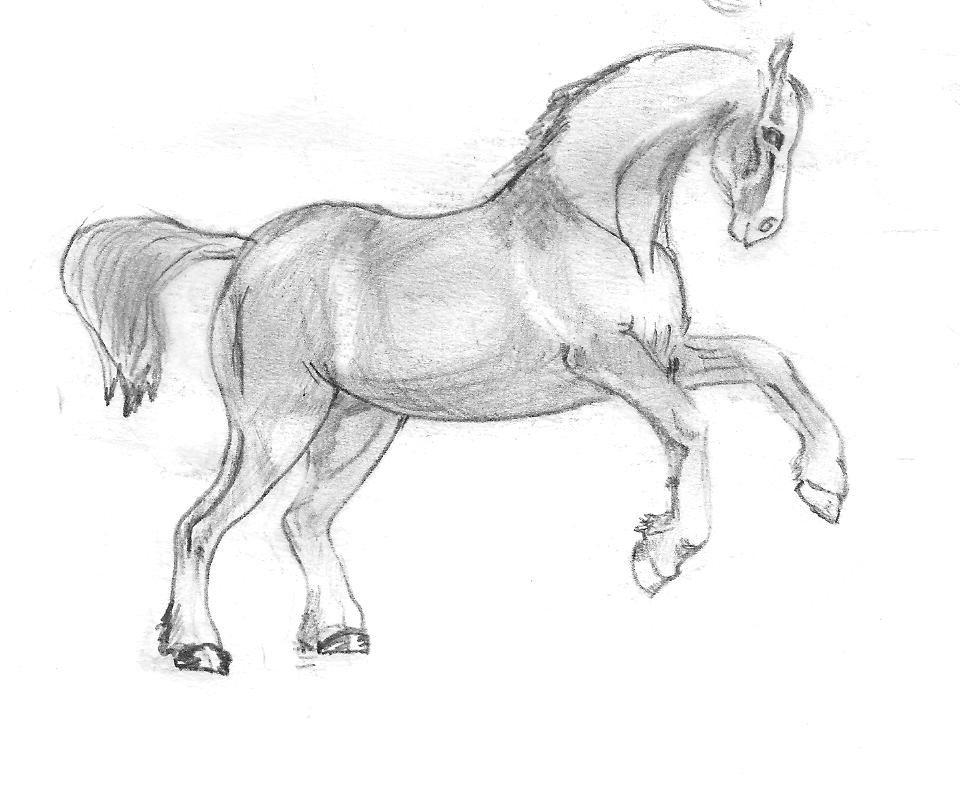 картинки простого рисунка лошади знаменитости улыбались