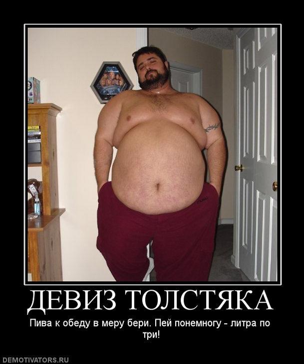 Приколы картинки толстяки