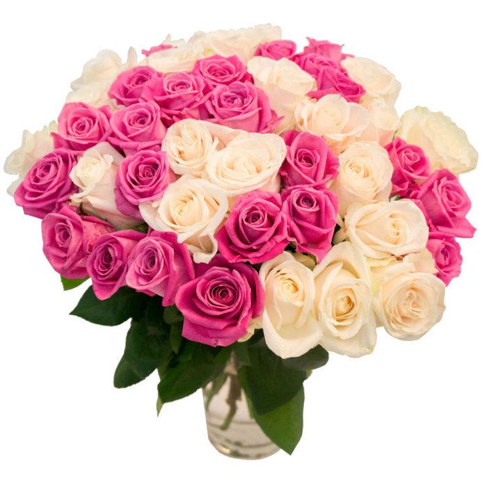 Фото цветы красивые на день рождения, одноклассниках сделать поздравление