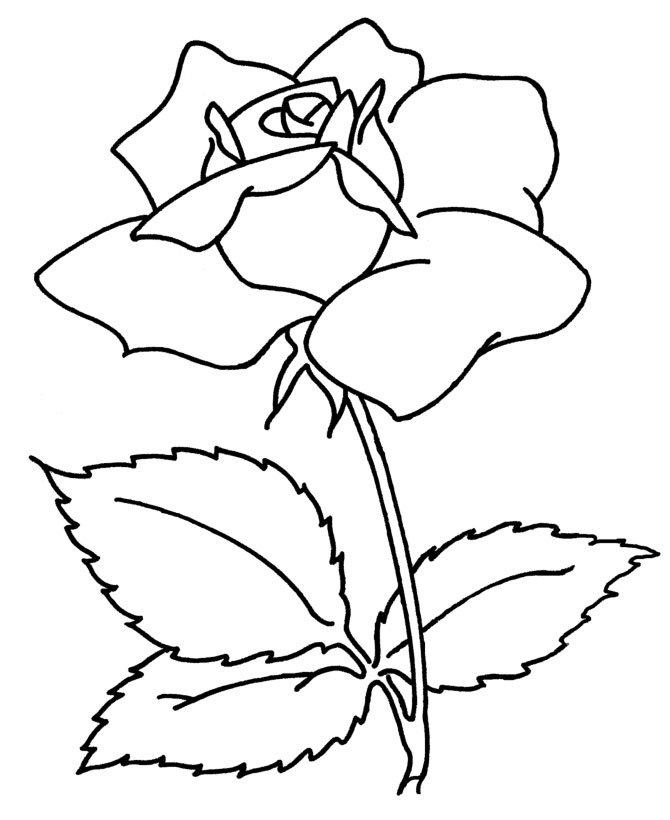 Картинки цветы распечатать на принтере, фото