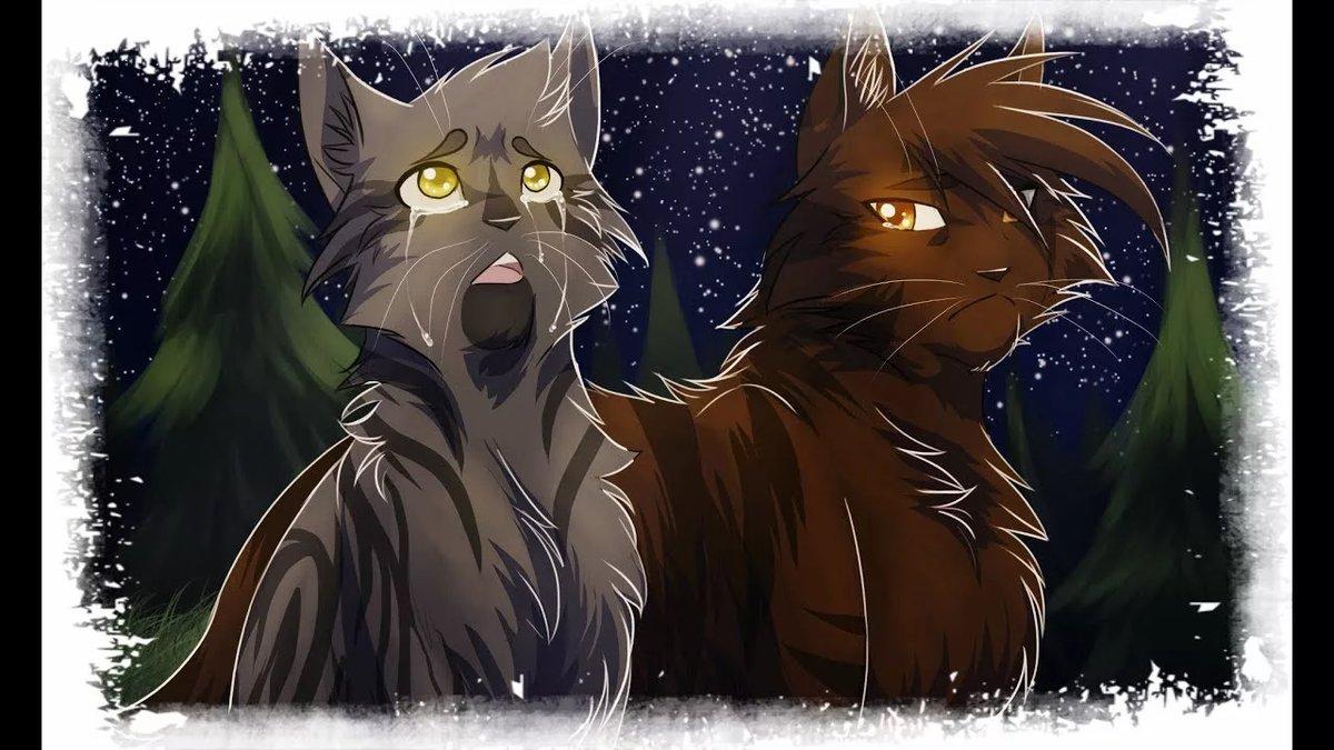 Картинки ветреницы из котов воителей