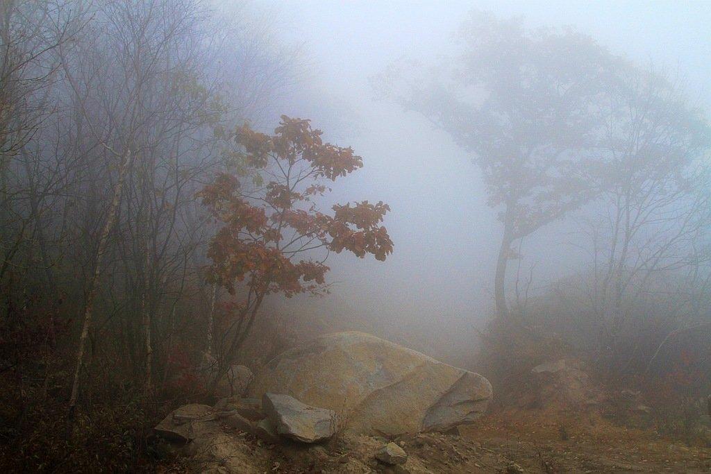 Туман может быть в любое время года. Ðто нередкое явление в низинаÑ, над водоемами, в гораÑ. В осенне-зимний период туман возникает наиболее часто. В эти месяцы преобладает повышенная влажность.