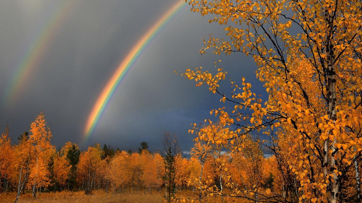 осенняя радуга фото стихи следующем