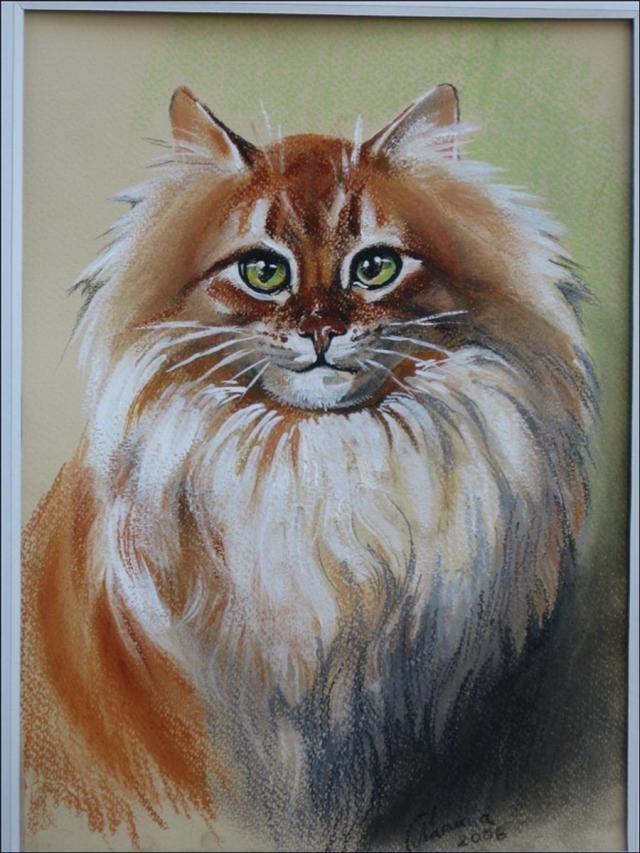 Картинки животных пастелью