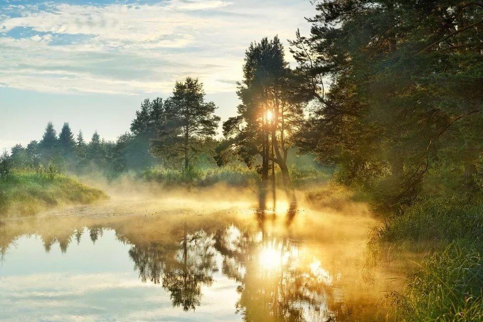 наиболее красивые фотографии утро природа следует