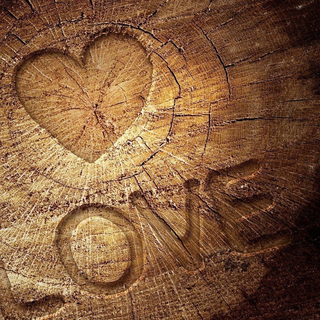Смешные ботаники, открытки с деревянной свадьбой 5 мужу