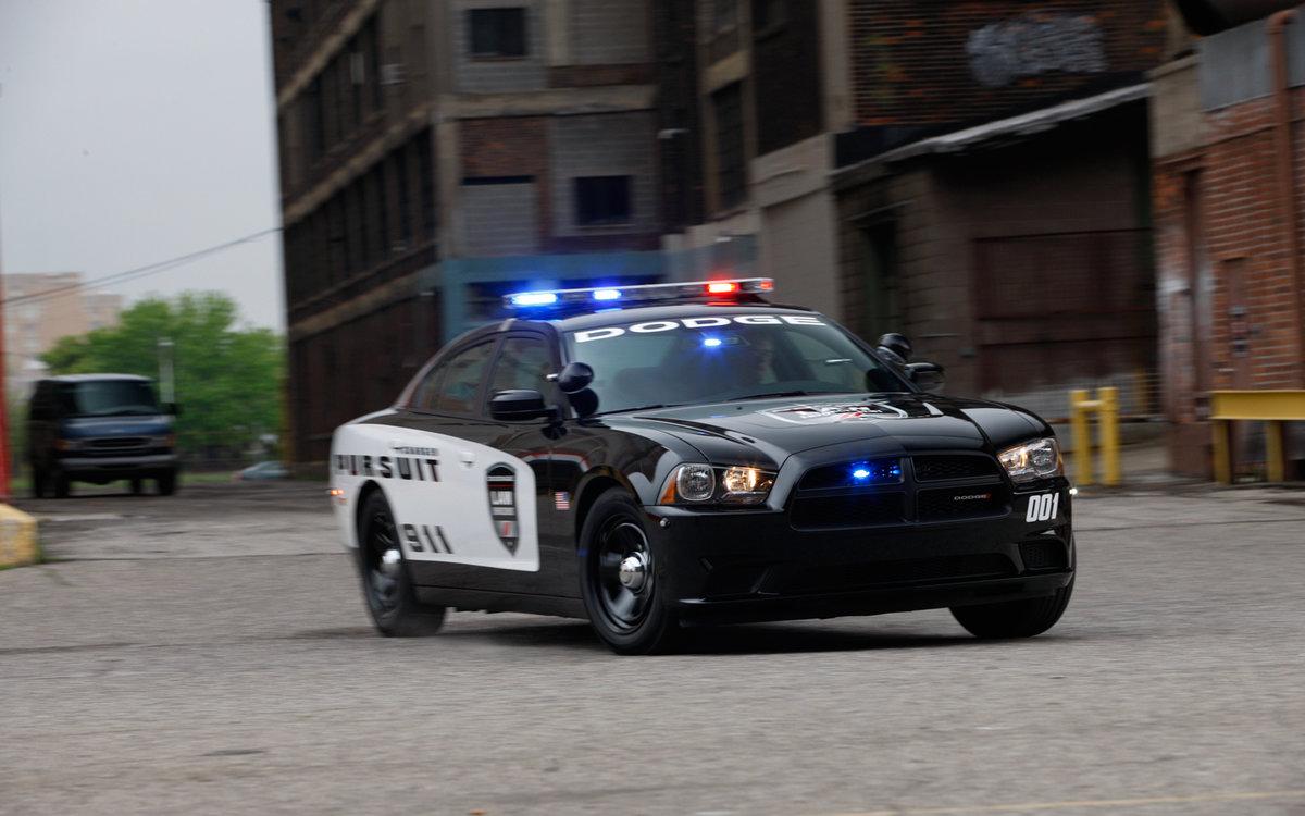 На полицейской машине картинки