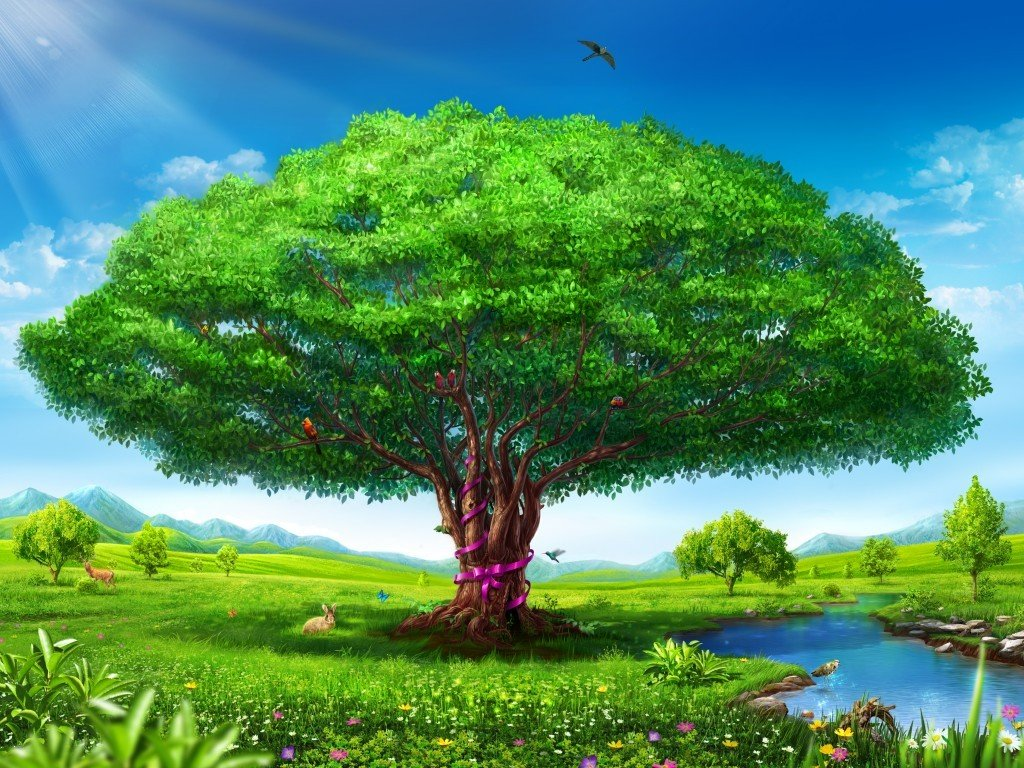 картинка большого дерева в рисунках помощью специальной фотосессии