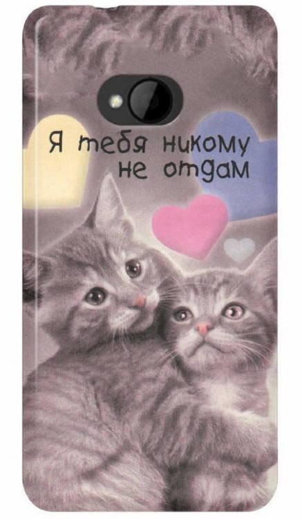 Картинки с надписью я люблю тебя кот