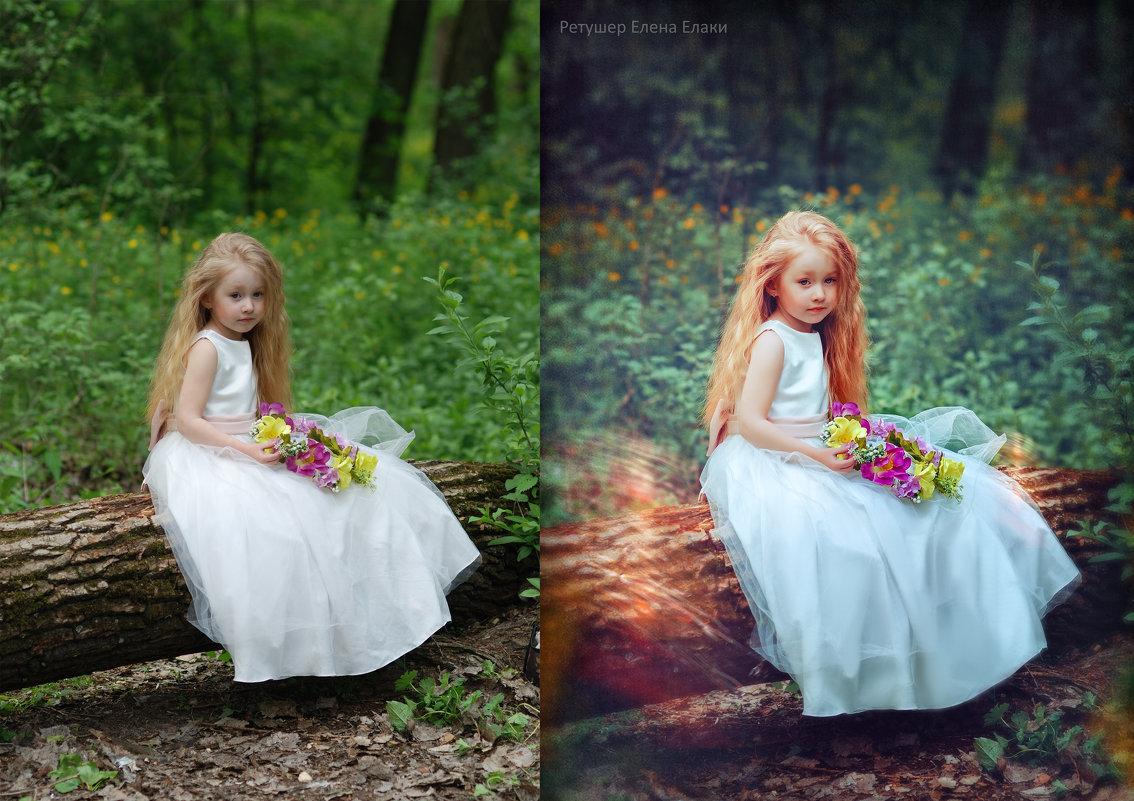 современная обработка фотографий на природе все