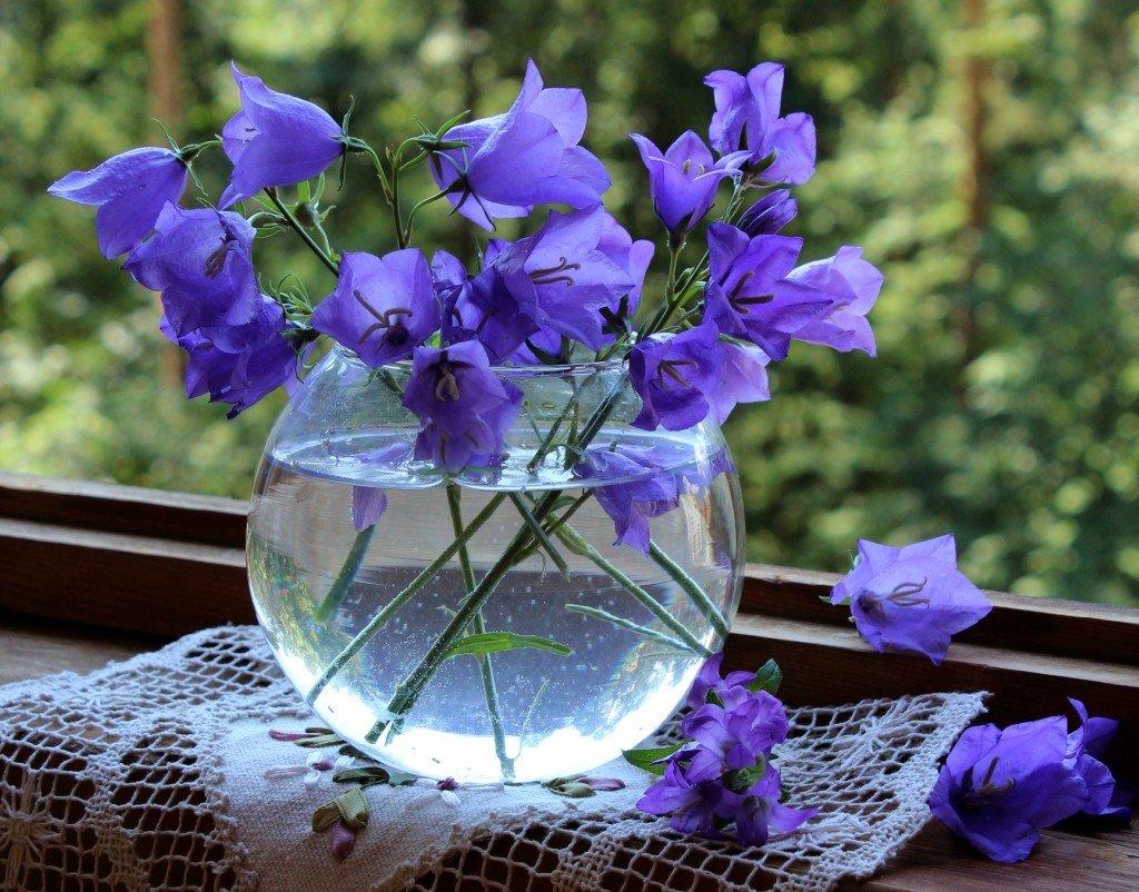 Магазин цветов, колокольчики в букете
