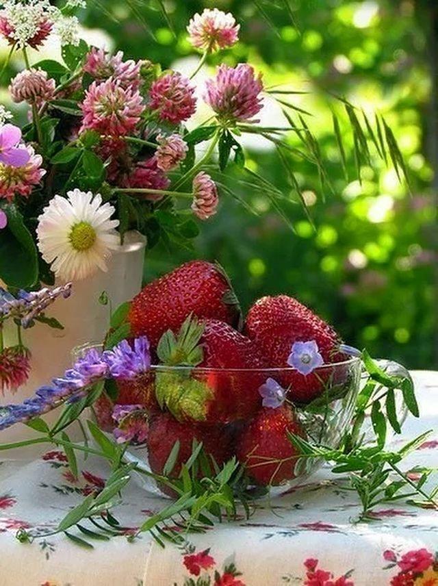 доброе утро цветущий июнь картинки ещё раз