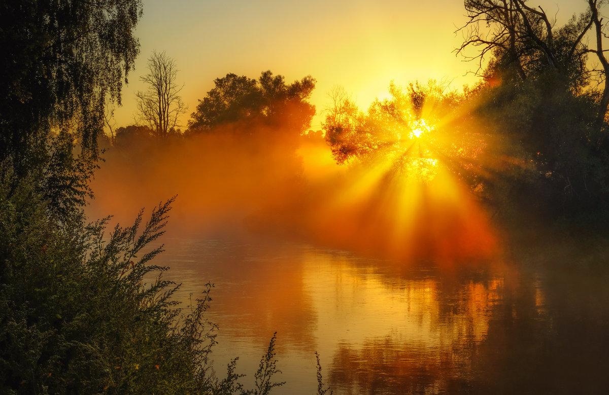 Доброе утро солнце картинки красивые необычные нежные