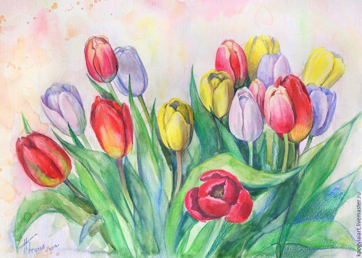 хорошее тюльпаны рисовать карандашом картинки для