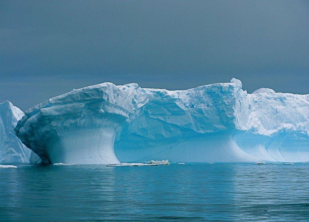 интервью попросили как выглядит антарктида фото приморских